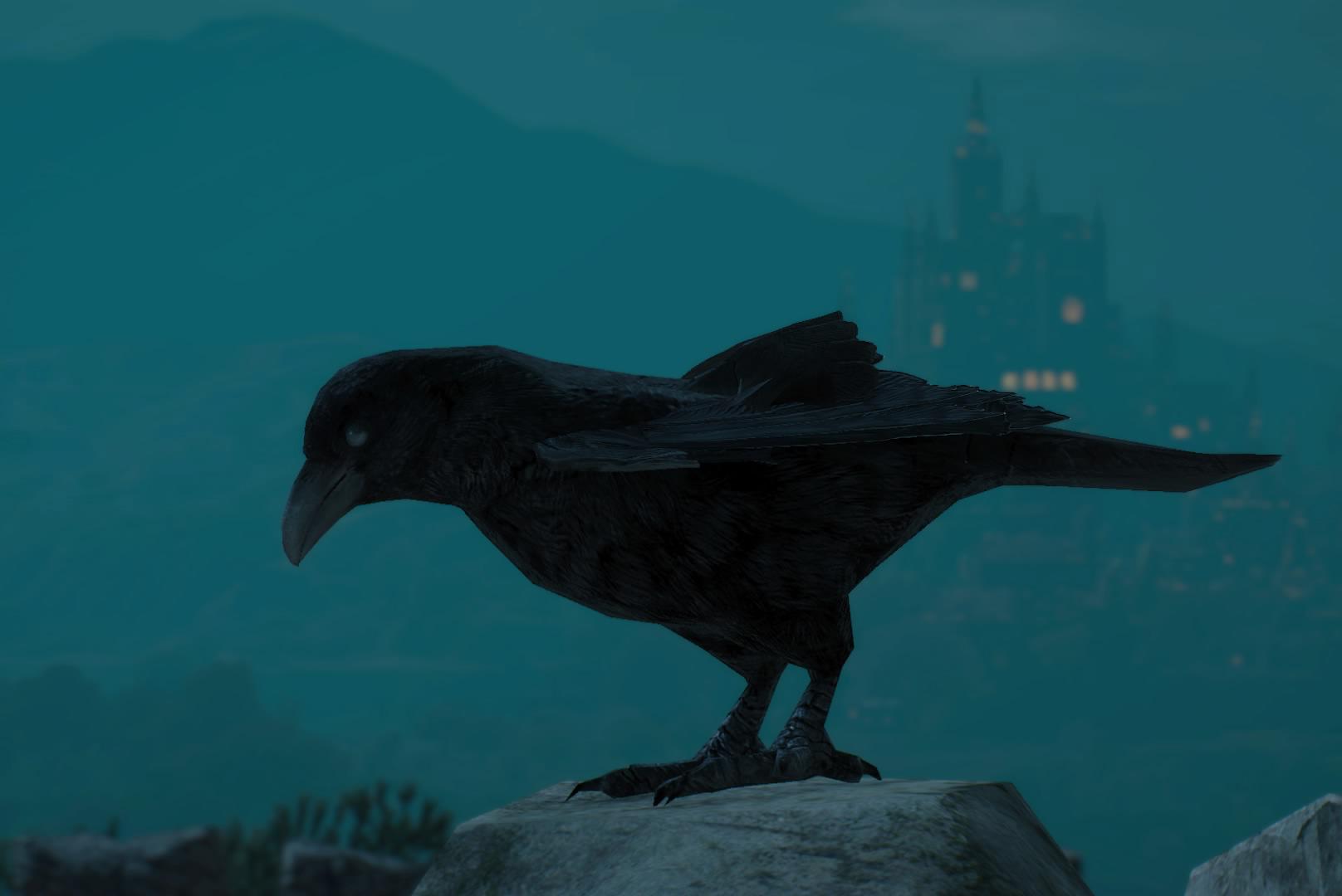 Ворон (птица)