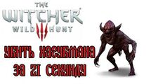 The_Witcher_3-_Hagubman_in_21_seconds