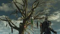 Дерево висельников4В3