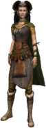 People Elf sorceress full