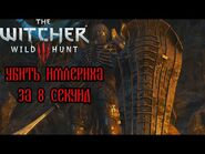 The Witcher 3- Imlerith on 8 seconds (WR)