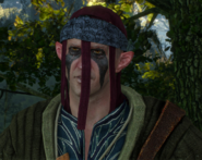Tw3 scoiatel merchant