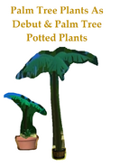 Palm Tree Plants As Debut & Palm Tree Potted Plants