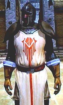 Outer City Guardsman