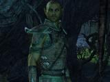 Pirondil (Elder Scrolls Online)