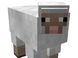 Assassin Sheep