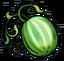 Meteor Melon.png