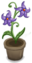 Potted Violet Flower.png