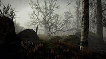 Screenshot Environmental 02.jpg