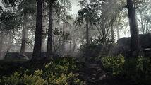 Screenshot Environmental 19.jpg