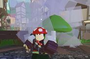 Mushroompoggers