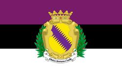 Flag Duchy of Joos Ducal Ensign.png
