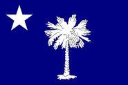 SC Flag Proposal Usacelt