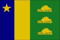 OR Flag Proposal BigRed618
