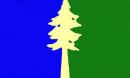 OR Flag Proposal Lorraine Bushek
