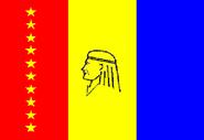 Flag of Maturín