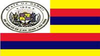 HI Flag Proposal elyski