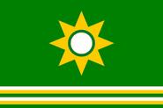 NE Flag Proposal Usacelt