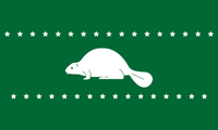 OR Flag Proposal lunarmotion-3