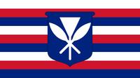 HI Flag Proposal lizard-socks