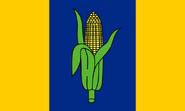 Proposed NE Flag Bezbojnicul