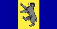 WS Flag Proposal False Dmitry 2