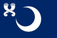 US-SC flag proposal Hans 1