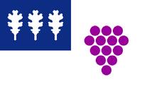 US-CT flag proposal Hans 5