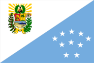 Flag of Sucre State (10 Stars)