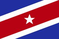 NC Flag Proposal McCourt