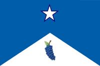 CT Flag Proposal Sammy