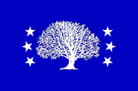 CT Flag Proposal ironchefshark