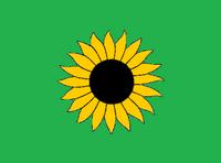 KS Flag Proposal VoronX 1