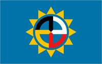 SD Proposed Flag Flaglog