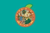 FL Flag Proposal Graphicology
