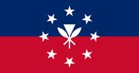 HI Flag Proposal QuantumEcho