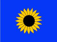 KS Flag Proposal VoronX 3