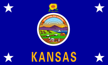 Standard of the Governor of Kansas (1962-present)