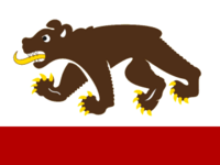 CA Flag Proposal False Dmitri
