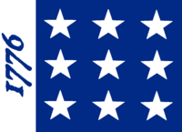 FlagofNH MINE SA 3Rowsof3 1776