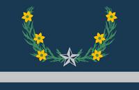 US-NV flag proposal Tim Ritz (textless)