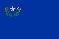 Nevada Blue Flag