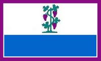 CT Proposed Flag VoronX 4