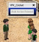 VFKCricketPicture