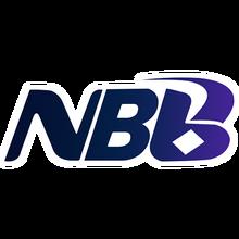 NoBiBilogo square.png