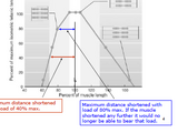 Muscle function- grading the strength of contraction