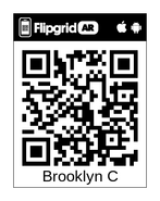 Brooklyn FlipCode-wqrybhzr3xgr