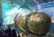 Whale Wash.jpg