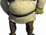 Shrek Party 9