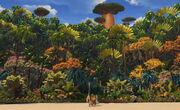 Madagascar-movie-screenshot2.jpg
